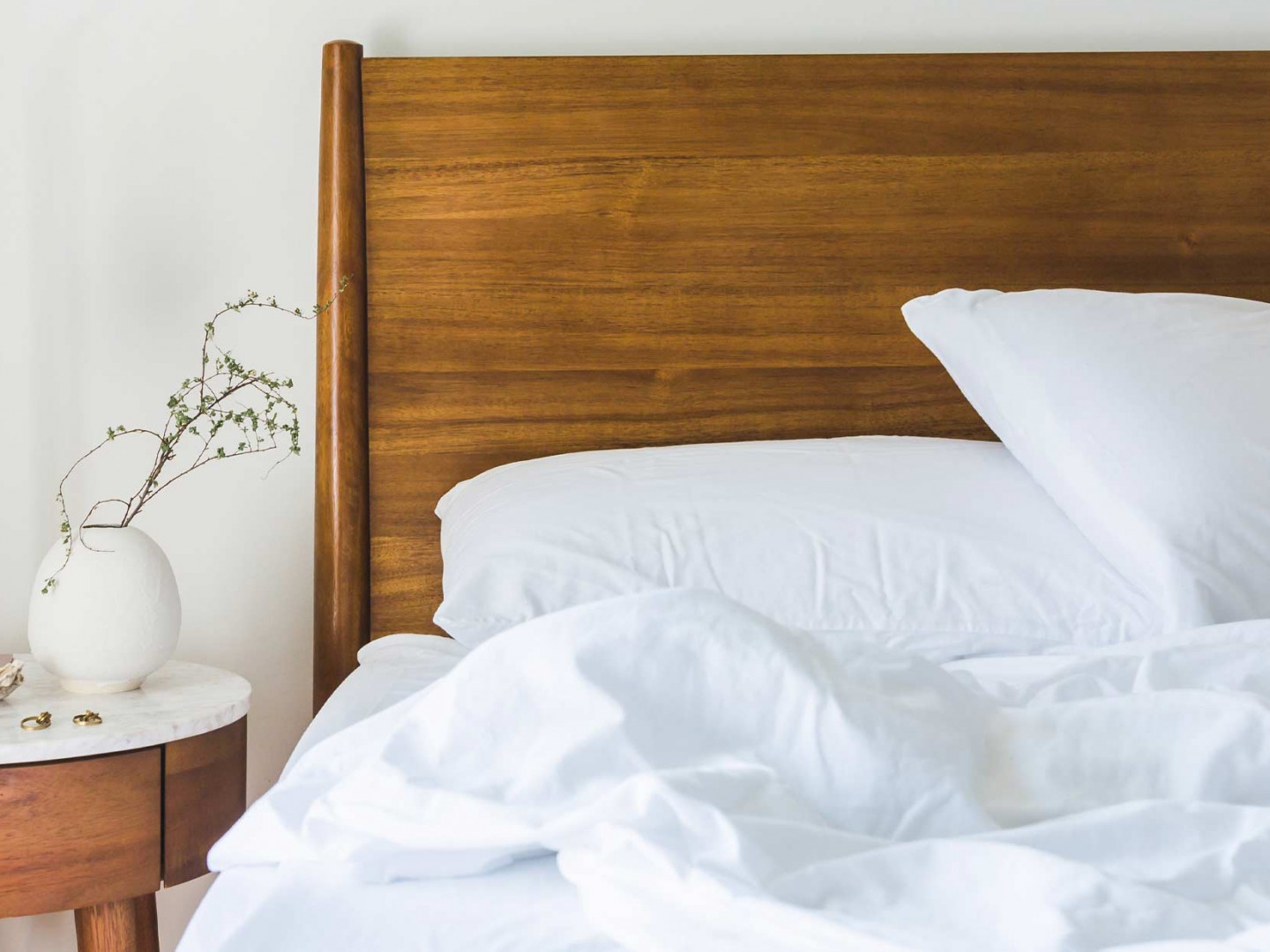 What should you know about bed bugs?